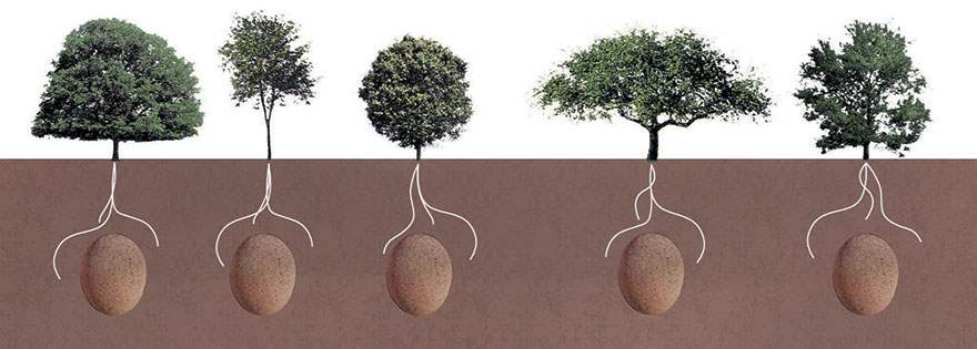 biodegradable-burial-pod-memory-forest-capsula-mundi-6-Optimized