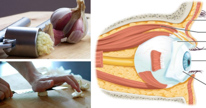 Image of How to use pressed garlic to REVERSE eyesight loss without glasses or surgery (plus 2 more foods)