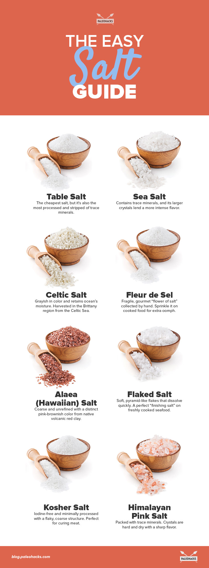 The-Easy-Salt-Guide-infographic (1)