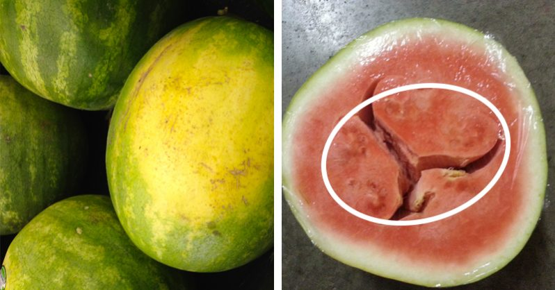 Image of How to Pick a Juicy, Delicious and Nutrient-Packed Watermelon Every Time