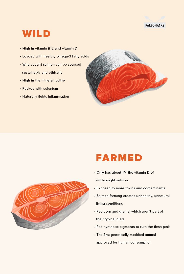 Salmon-Infographic-article-1