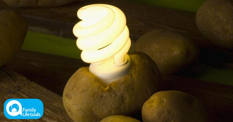 Image of How to light your room up for weeks using a single potato (must-watch video)