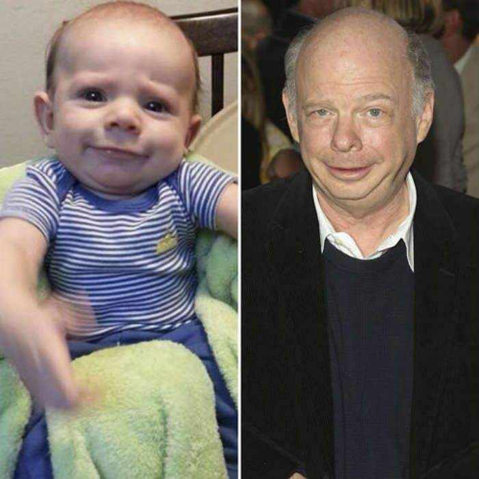 wallace shawn baby lookalike