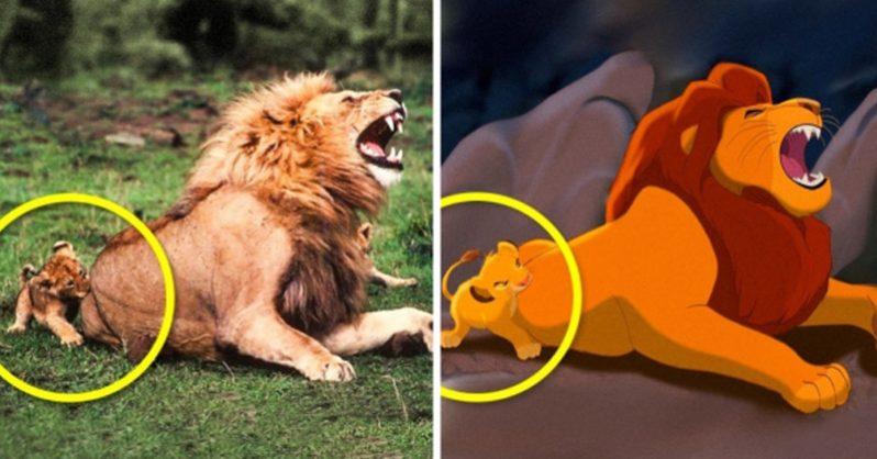 Real Life Photos Of Your Favorite Animated Characters Family Life