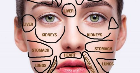 Image of Traditional Chinese Medicine Face Map Reveals What Part of Your Body is Sick