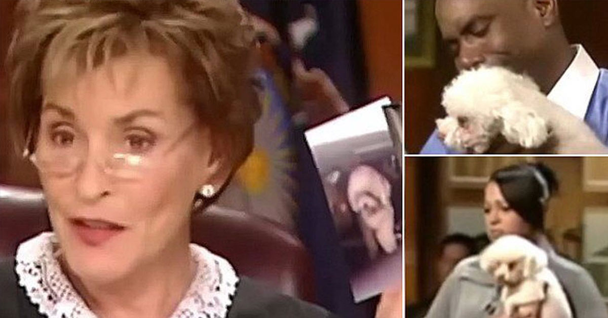 Judge Judy Sets Stolen Dog Loose in Courtroom So That He Can Identify His Real Owner