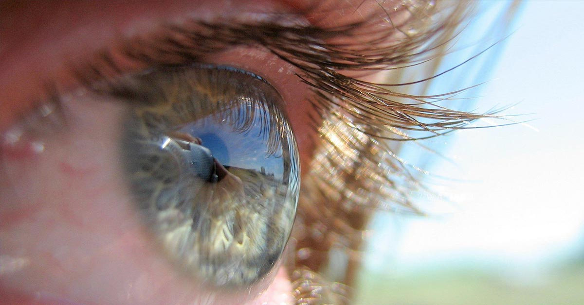 Study Suggests That Open-Minded People Have a Different Visual Perception of Reality