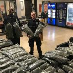 Oops! False alarm: NYPD brags about making huge drug bust only for it turn out to be legal hemp