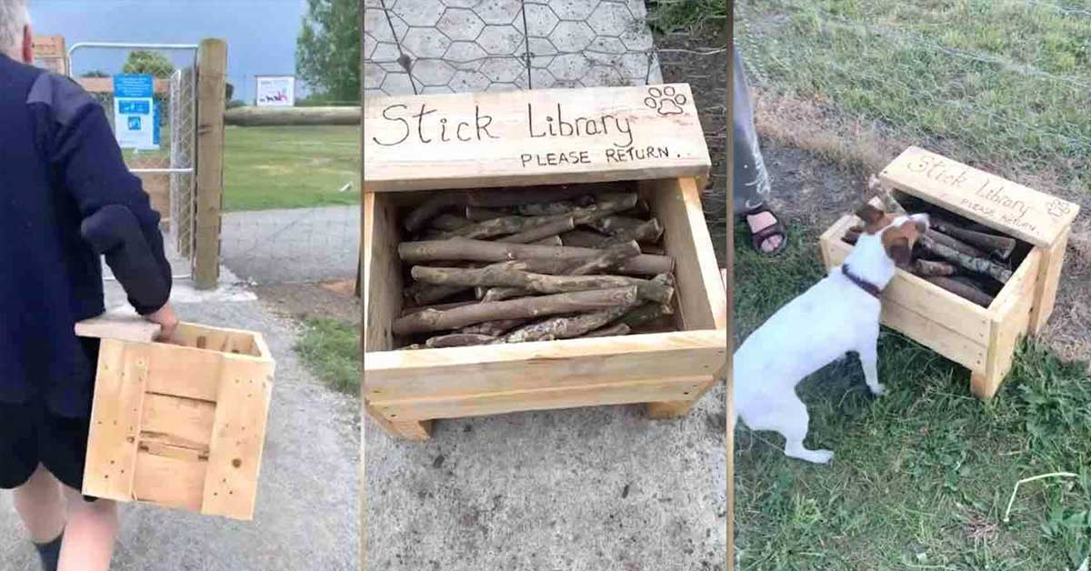 New Zealand Man Notices Distinct Lack Of Good Sticks At His Local Park And Builds A Stick Library For Neighborhood Dogs
