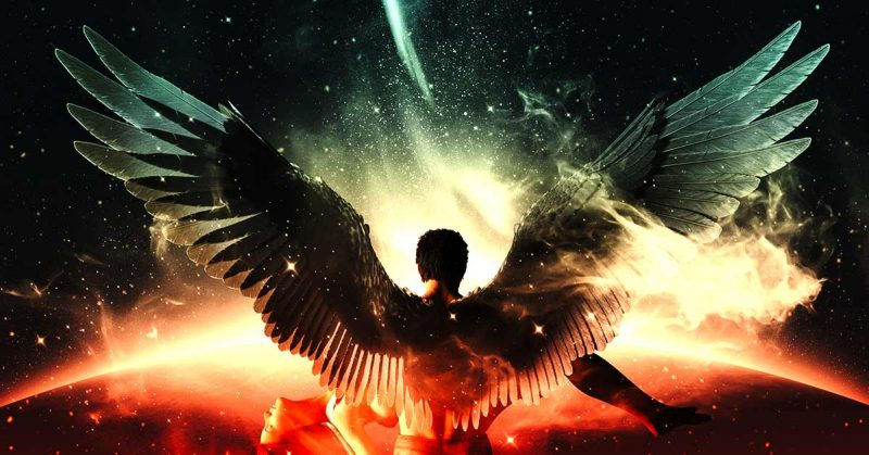 5 Signs from Your Angels You Should Never Ignore