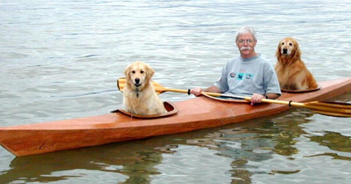 Man Builds Custom Kayak to Take Adopted Dogs on Aquatic Adventures