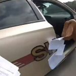 Georgia Goat Jumps into Cop Car, Chews Papers, Spills a Drink, Then Head-Butts Deputy