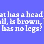 Only 1% of People Who Tried Could Solve This Riddle. Can You Solve It?